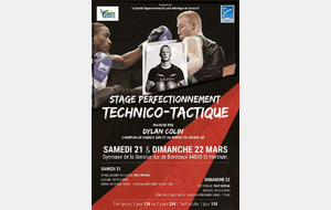 Stage perfectionnement TECHNICO-TACTIQUE